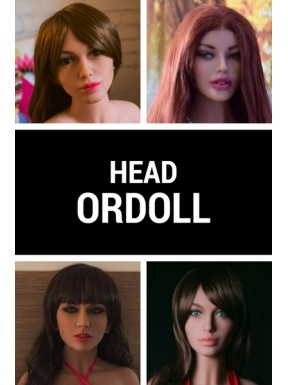 Sex doll Head - ORDOLL