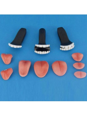 Teeth and tongue Kit (Resin)