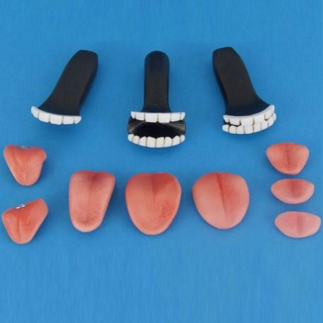 Teeth and tongue Kit (Resin)